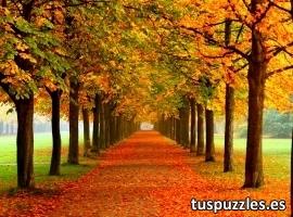Paseo en otoño